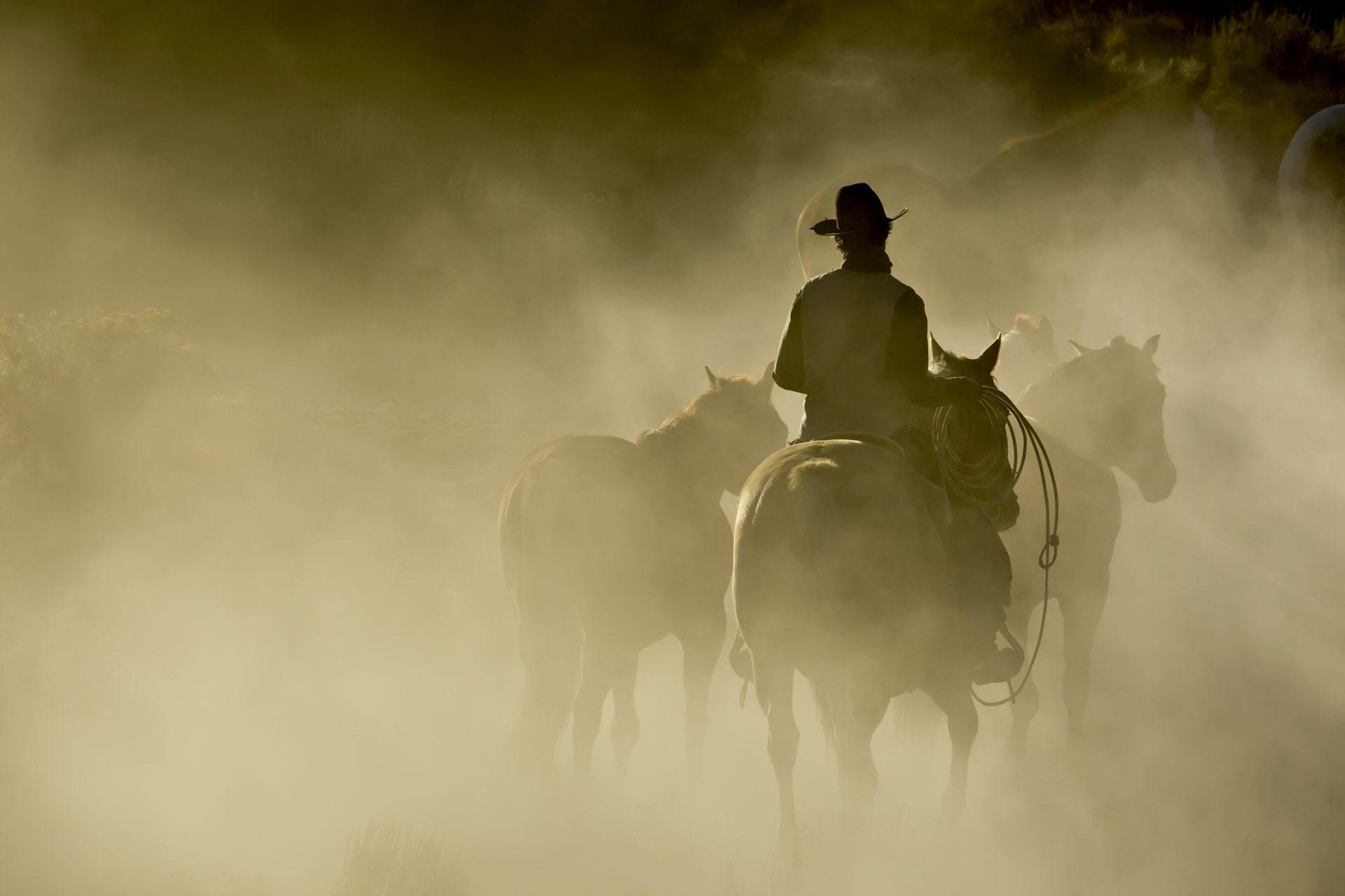 Te voet of te paard, hoe ga jij op je doel af?